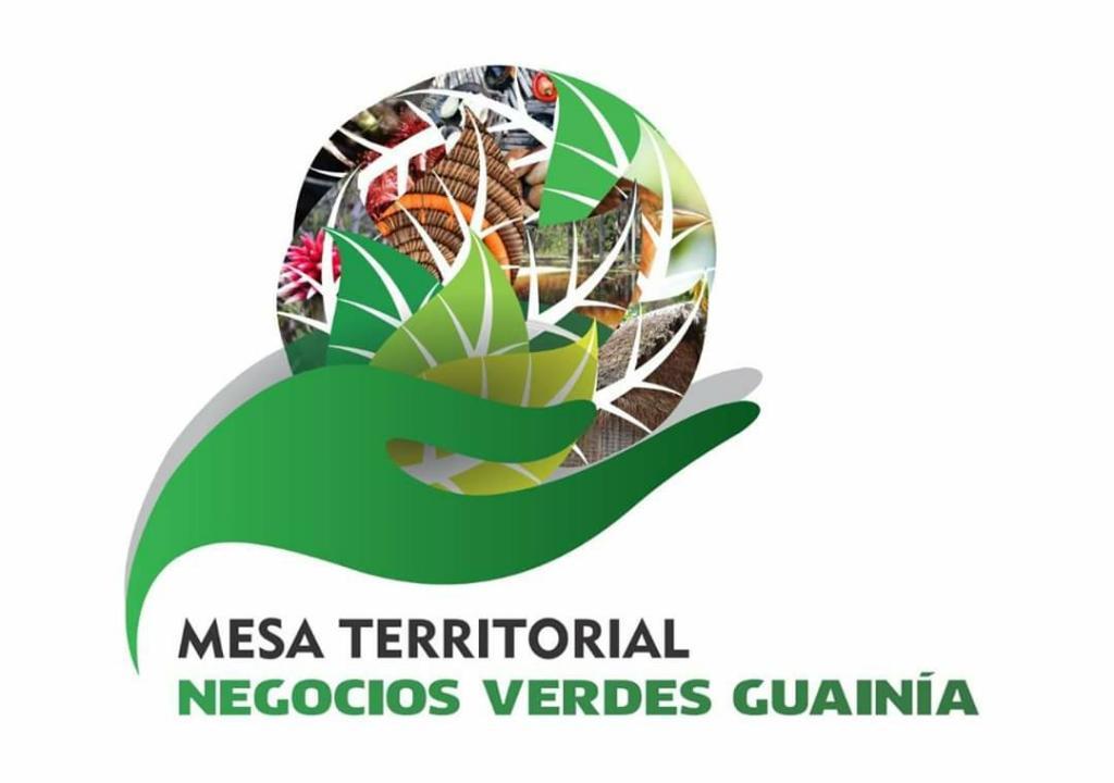 imagen alusiva a  Encuentro de la Mesa Territorial de Gestión de Negocios Verdes y Sostenibles de Guainía