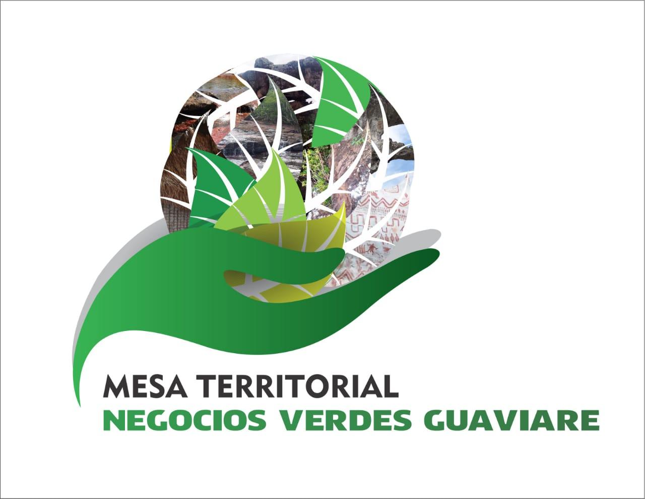 imagen alusiva a  Reactivación de la Mesa Territorial de Gestión de Negocios Verdes y Sostenibles de Guaviare